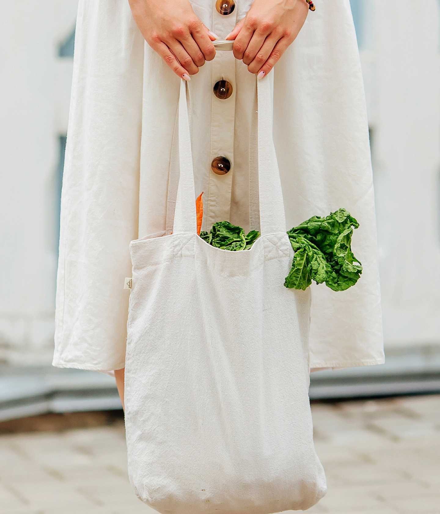 Person holding cloth shopping bag full of veggies