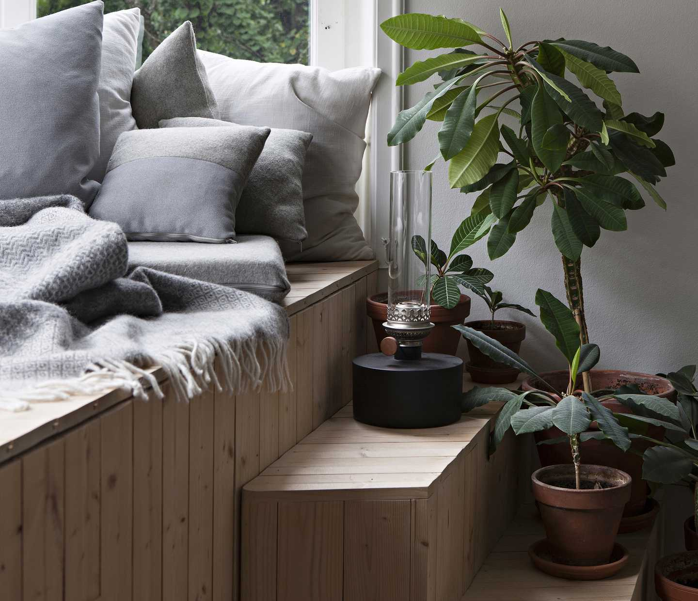 A window seat with pillows and houseplants nearby