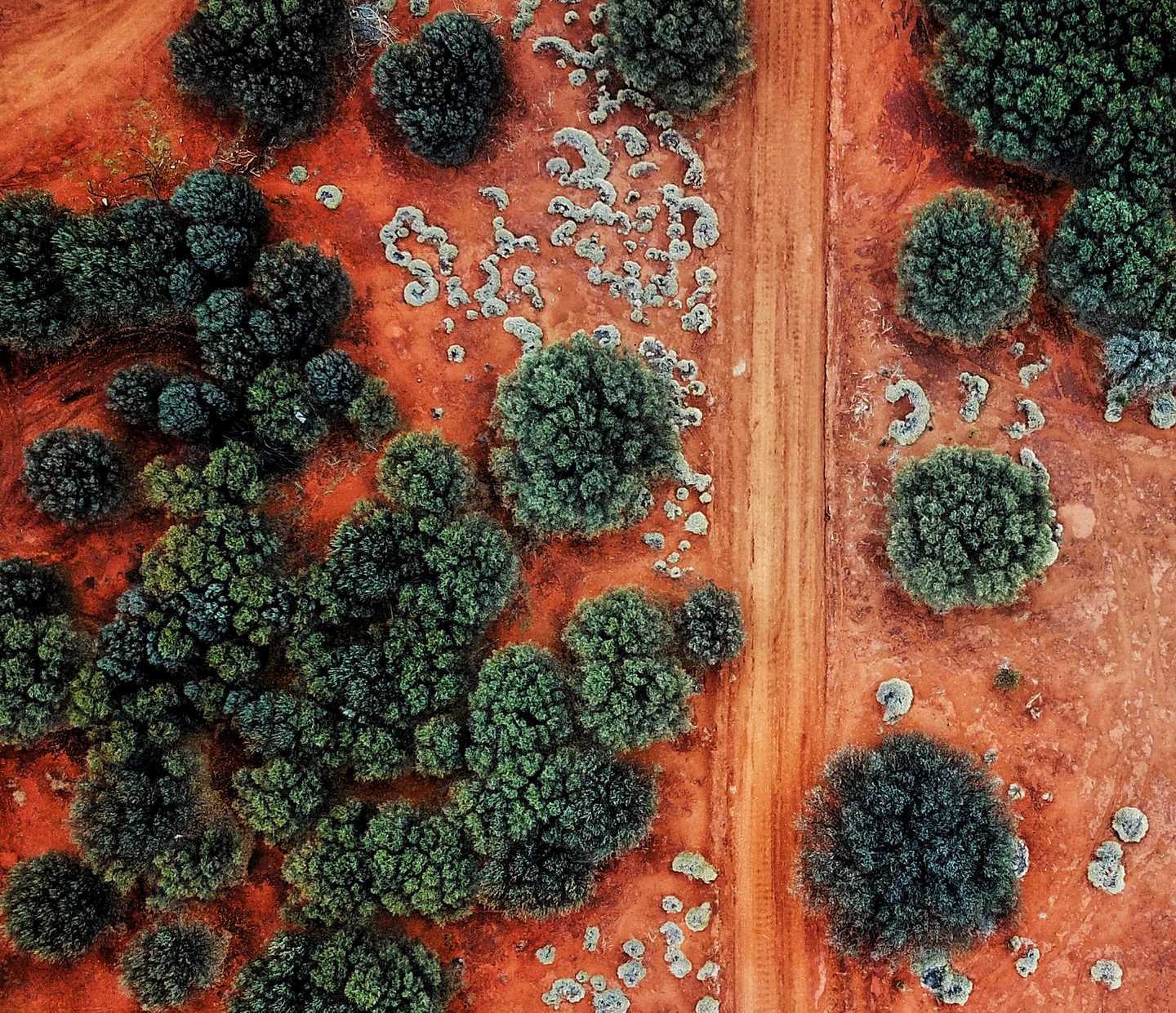 Arial view of arid landscape with dirt and brush