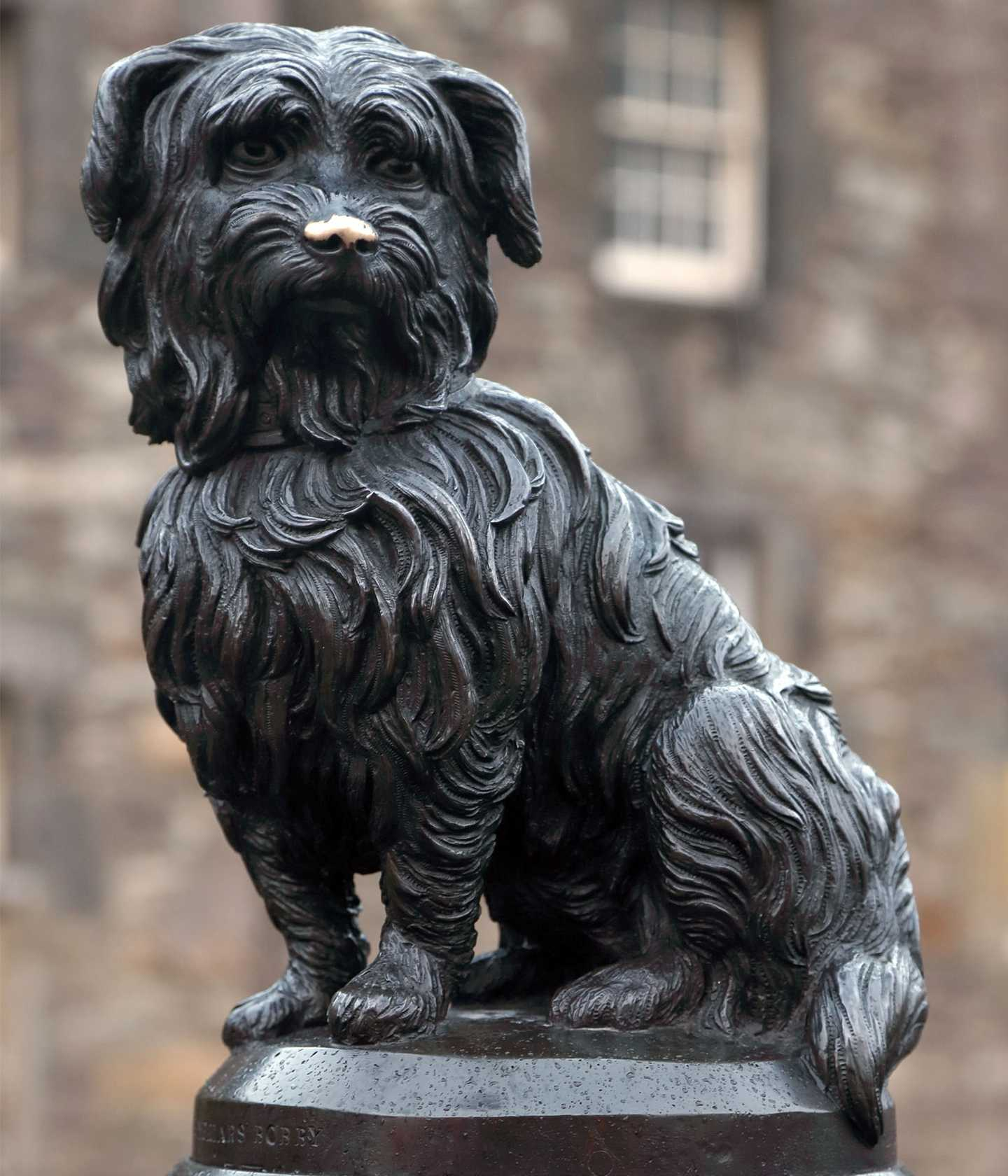Bronze sculpture of small dog